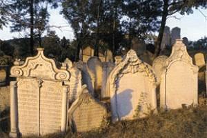Představí židovskou kuchyni i hřbitov