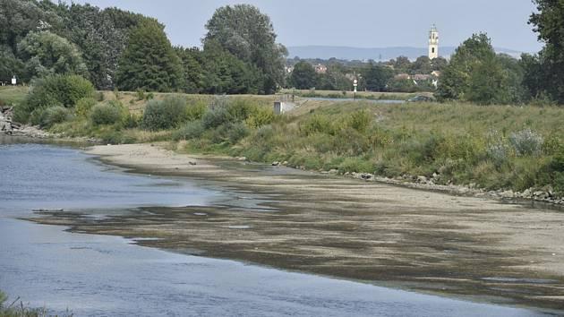Vyschlé koryto řeky Moravy - Vyschlé koryto řeky Moravy 23. srpna 2018 u Lanžhota na Břeclavsku.