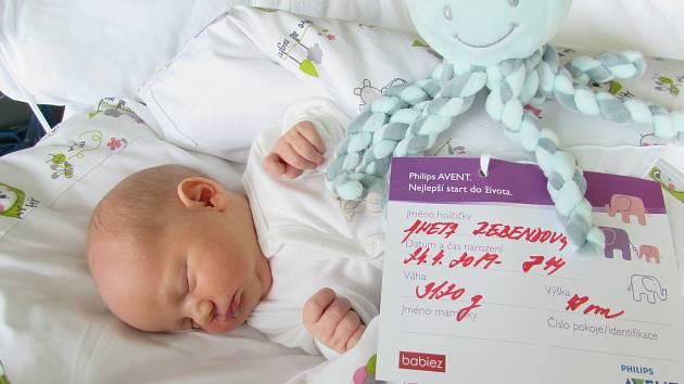Aneta Rebendová, Nemocnice Břeclav, 24. dubna 201948 centimetrů, 3120 gramů