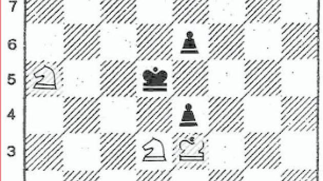 Řešení (obr.): 1. Dh8!
