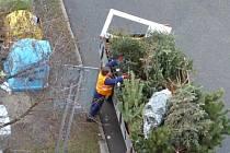 Vánoční stromky mizí z ulic.