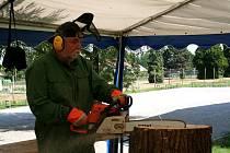 Lázeňské dřevosochání v Lednici.