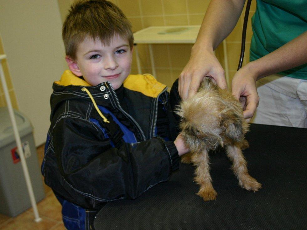 Břeclav má novou veterinární kliniku.
