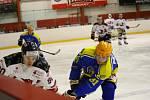 Břeclavští hokejisté hráli znovu jen se čtrnácti hráči. Přesto dokázali vytěžit dva body v malém derby v Brně.