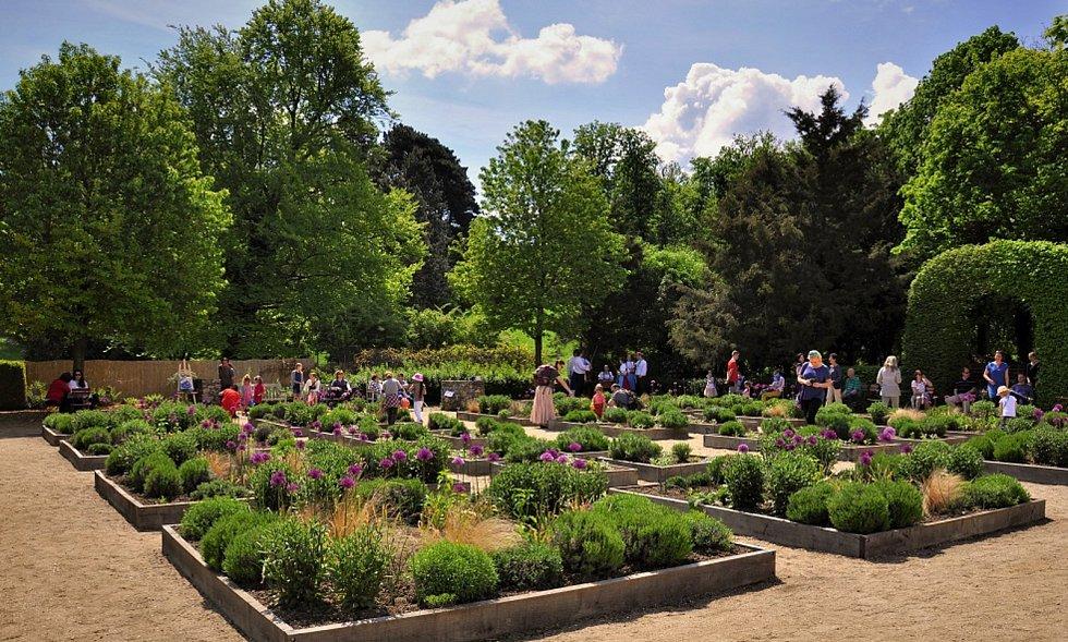 Věra Žďárská je odborná garantka valtické bylinkové zahrady. Zajišťuje pro veřejnost rovněž širokou paletu zajímazvých kurzů.