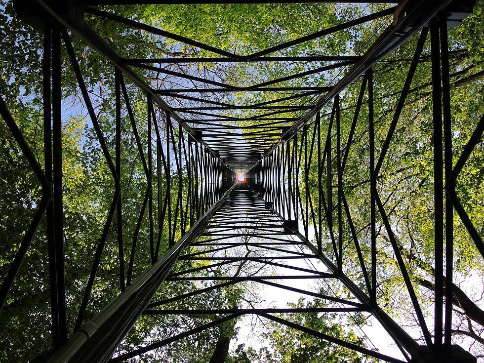 Odborníci mají u Lanžhota ekosystémovou stanici s vysokým stožárem a přístroji. Zkoumají chování lesa v závislosti na počasí a měnícím se klimatu.