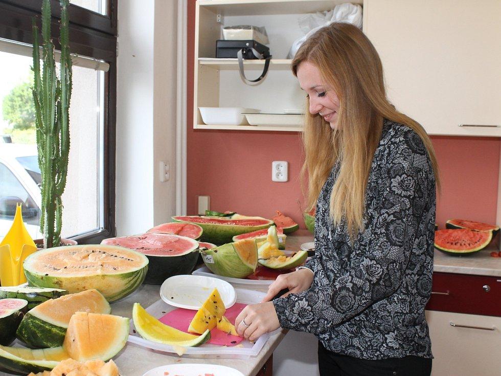 Na výstavě melounů ve vestibulu Zahradnické fakulty Mendelovy univerzity v Lednici ochutnávali návštěvníci zhruba z dvou set druhů této zeleniny.