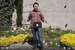 Botanik Adam Knotek provádí zámeckými zahradami pomocí videa