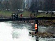 Mladý muž skočil z břeclavského Fučíkova mostu do Dyje. Na břeh ho vytáhli hasiči spolu se strážníky.