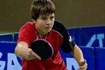 Denisa Pyskatá je největším talentem lanžhotského stolního tenisu.