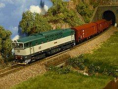 Marek Šafařík tvoří modely železničních tratí od svých deseti let. Už osm let je v klubu Modely Brno.