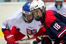 Čeští hokejisté (v bílém) dokázali v napínavém utkání zdolat vrstevníky z USA.