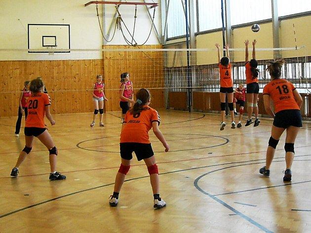 Mladé volejbalistky zvítězily na domácím turnaji.