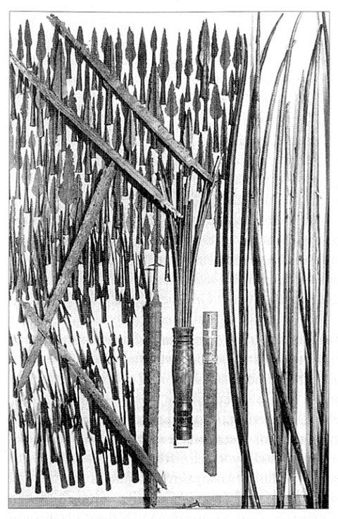 Nálezy zbraní (hroty kopí a šípů, meče a luky) z dánských bažinných obětišť (podle Podborský 2006: Náboženství pravěkých Evropanů).