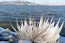 Po době ledové přichází jaro. FOTO: Miroslava Jakubčíková