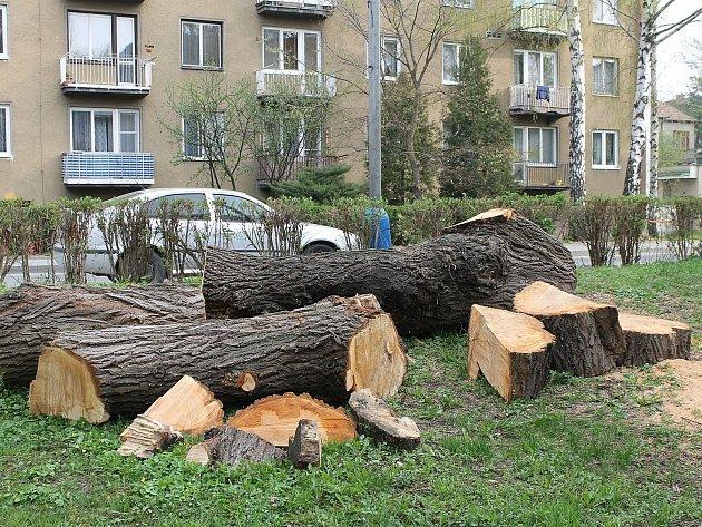 V břeclavské lokalitě Dubič káceli zaměstnanci města stromy, vysadit by tam měli nové.