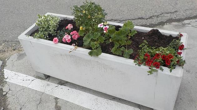 Nově osázené betonové truhlíky na autobusovém nádraží ve Velkých Pavlovicích po útoku zloděje.