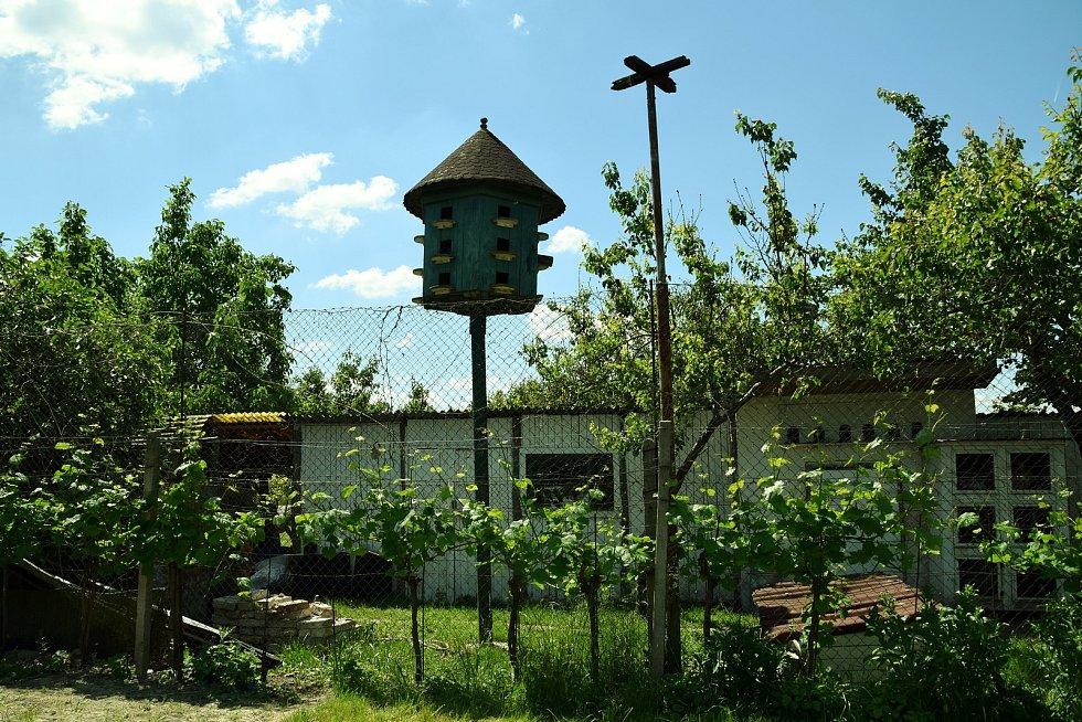 Manželé Drtílkovi převzali v Hlohovci farmu po Klářině zemřelém otci. Na památku po něm ji pojmenovali Spěvákova farma.