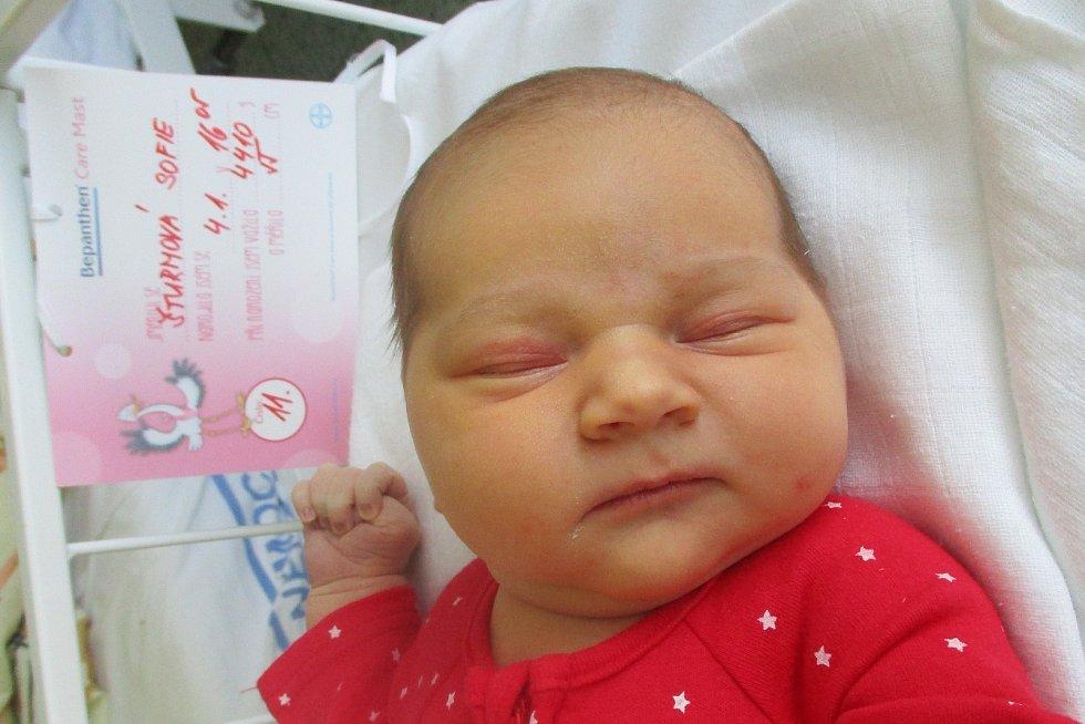 Sofie Šturmová, 4. ledna 2020, 16.05, Nemocnice Břeclav, 55 centimetrů, 4410 gramů. Foto: Monika Švestková
