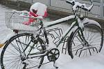 Břeclavsko zasypal sníh.