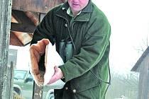 Myslivci na Břeclavsku o víkendu podávali spárkaté zvěři do krmelců medikované krmivo.
