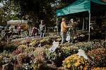 Podzimní Flora Olomouc