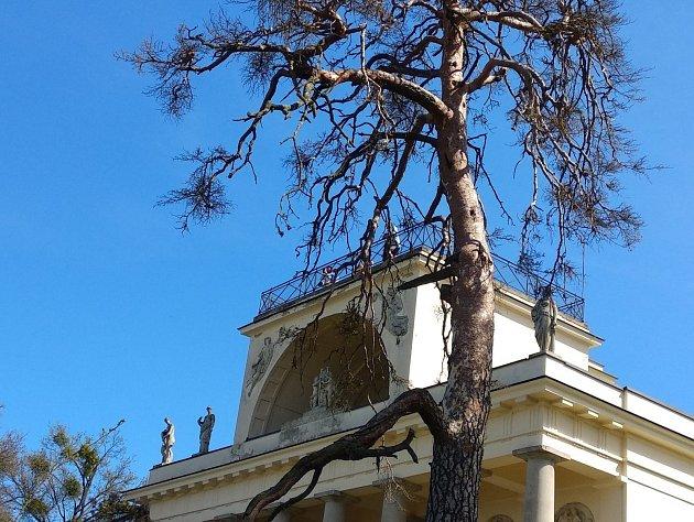 Apollonův chrám mezi Břeclaví a Lednicí.