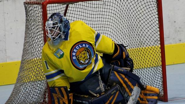 Břeclavští inline (ve žlutém) hokejisté rozstříleli na domácím prvoligovém turnaji všechny tři soupeře.