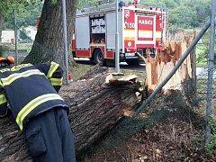 Hasiči v noci na pátek řešili desítky popadaných stromů.