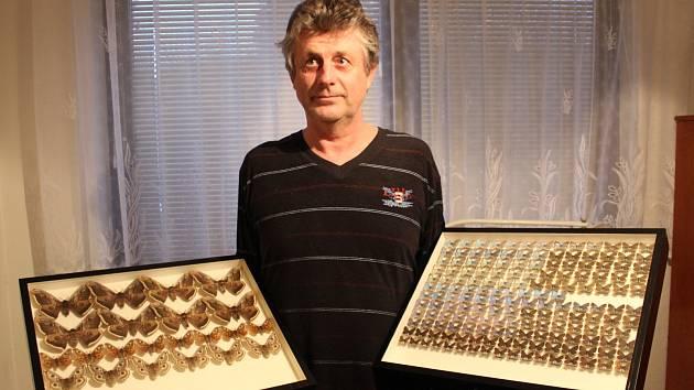 Za čtyřicet let Jaroslav Ciprys z Lanžhota nasbíral osm set padesát motýlů a chytá je dál.