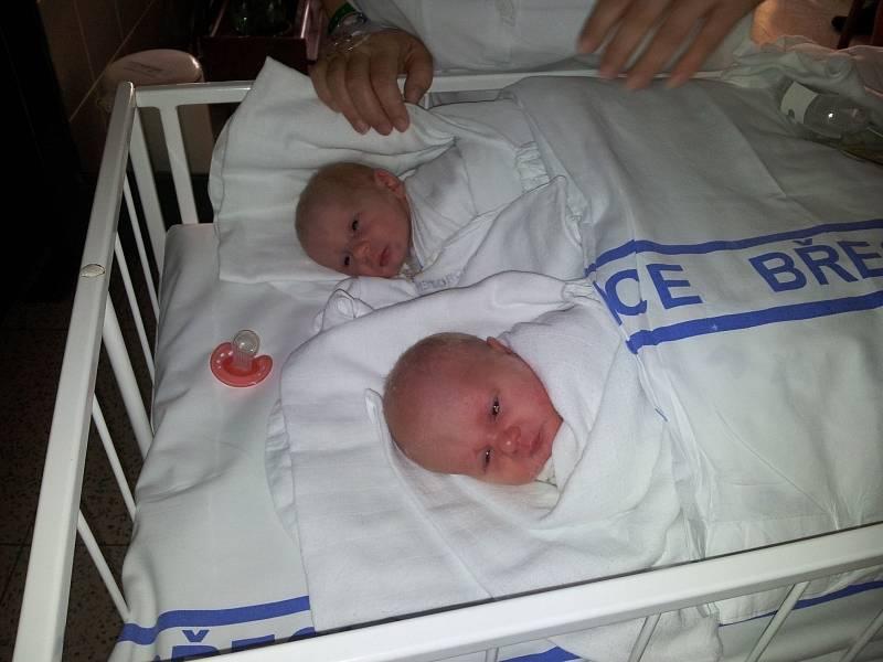 Jakub a Martin Strmiskovi, 15. 2. 2013, Přítluky, 47 cm, 2,27 kg, 46 cm, 2,4 kg