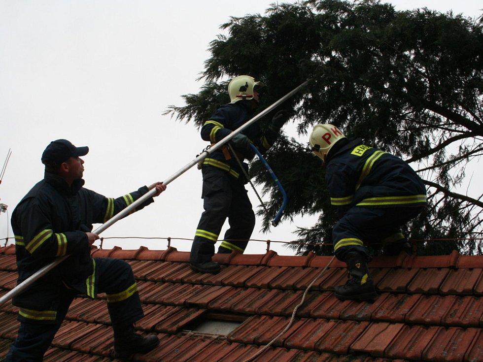 Vichřice potrápila také manžele v Hustopečích, když na střechu jejich rodinného domku spadla vzrostlá tůje. V tomto případě nedošlo k žádným škodám.