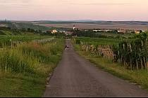 Po zpevněné cestě se od nynějška dostanou cyklisté z Velkých Pavlovic až do Staroviček.