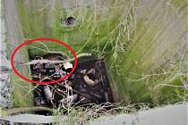Břeclavští hasiči vyprostili srnu z betonové šachty