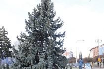 Vánoční strom před břeclavským kulturním domem Delta. Dříve byl na Náměstí T. G. Masaryka.