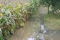 Přívalový déšť ve Valticích vyplavil řadu sklepů.