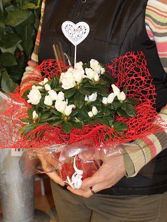 Ivana Fialová vede jedno zbřeclavských květinářství.
