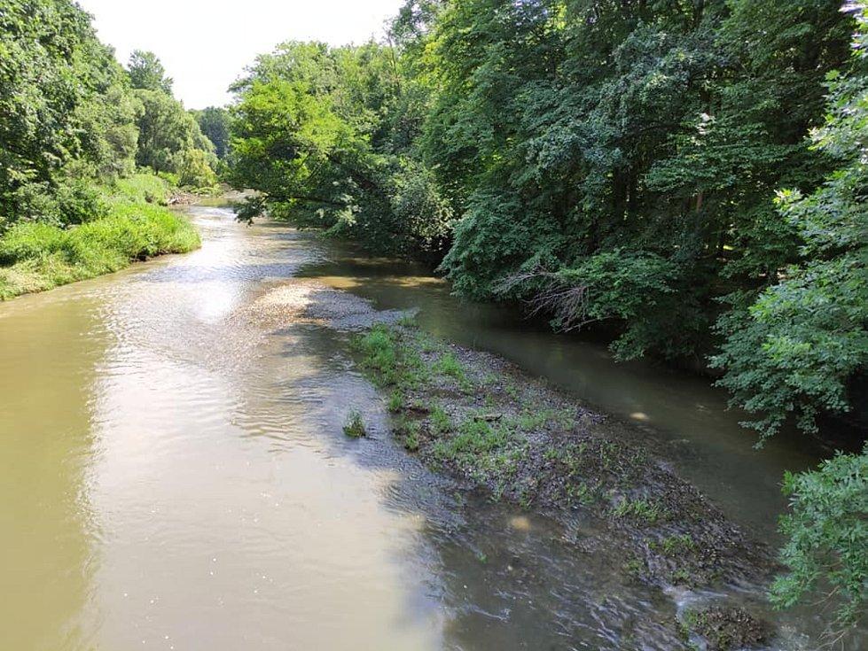 Z výletu do Nových Zámků v Litovelském Pomoraví. Takto vznikají v Litovelském Pomoraví nová ramena, řeka nanese materiál, který ji nakonec rozdělí.