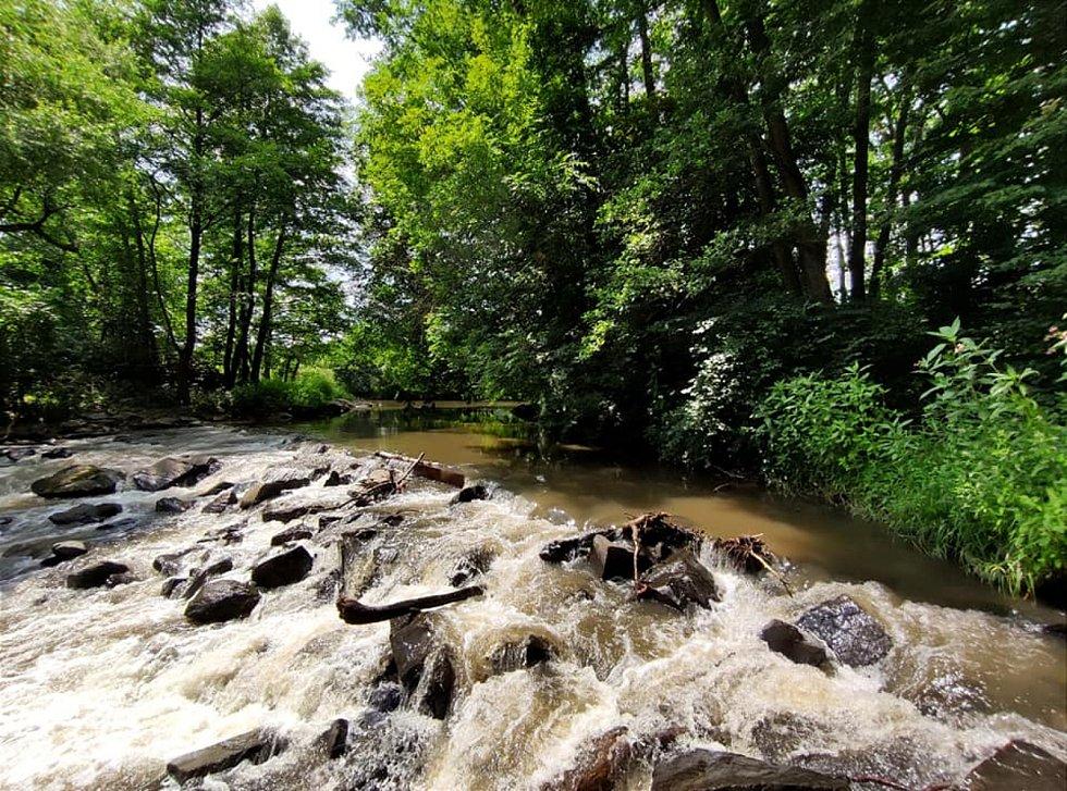 Z výletu do Nových Zámků v Litovelském Pomoraví. Jez pod Templem na řece Moravě.