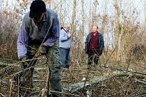 Lidé z Novosedel kácí kvůli hrázi stromy, které využíjí na topení v zimě.