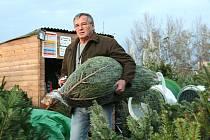 Prodej vánočních stromků v Břeclavi.