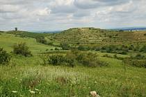 Nejvyšší z Dunajovických kopců Velká Slunečná připomíná díky umělým terasám stupňovitou pyramidu dávných Mayů. Vzniku stepi v okolí pomohla pastva koz a ovcí. Žijí tam vzácné druhy hmyzu, například motýl otakárek ovocný.