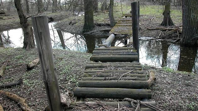 Přírodní rezervace Cahnov-Soutok.
