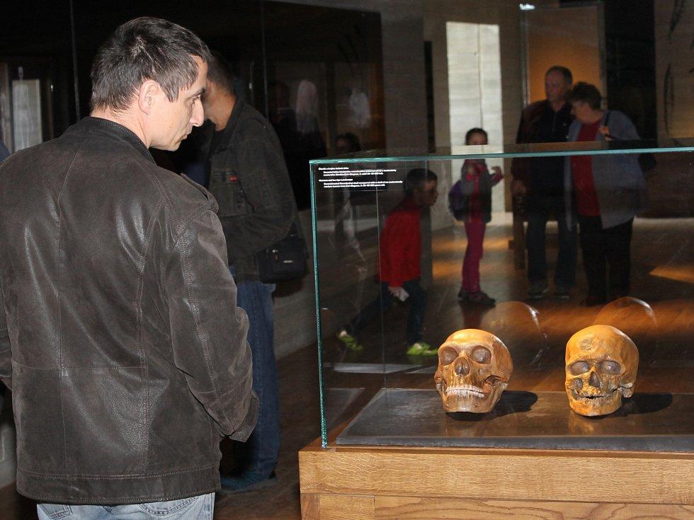 Archeopark Pavlov připravil pro návštěvníky u příležitosti Mezinárodního dne archeologie speciální akci. Zahrnovala pět komentovaných prohlídek, přednášku na téma Lovci mamutů pod Pálavou i omalovánky a puzzle pro děti.