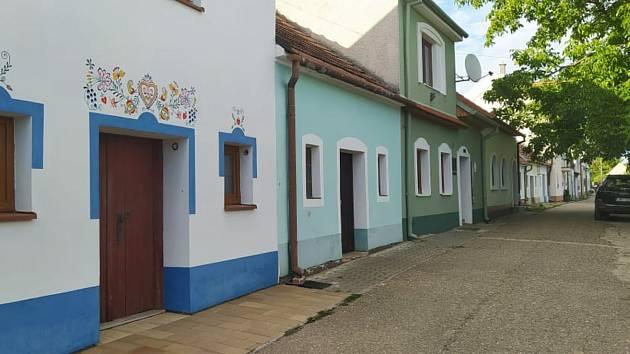 Z procházky vinicemi a sklepy v Bořeticích.