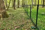 Fotografie u oplocenky pořídili lesníci na konci dubna.