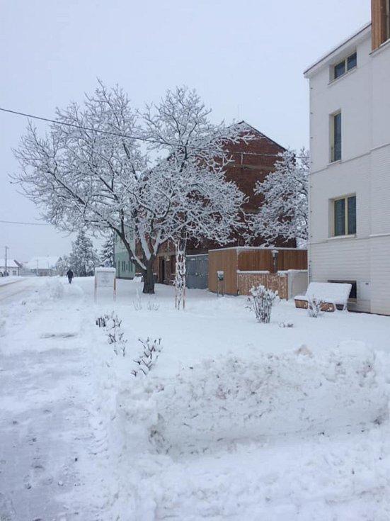 Břeclavsko pod sněhem. Na snímku Hrušky.