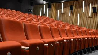 vice kino
