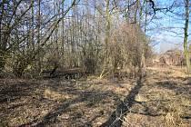 Občanské sdružení Lužánek obnovuje mokřady v lokalitě Drnholecké špice.