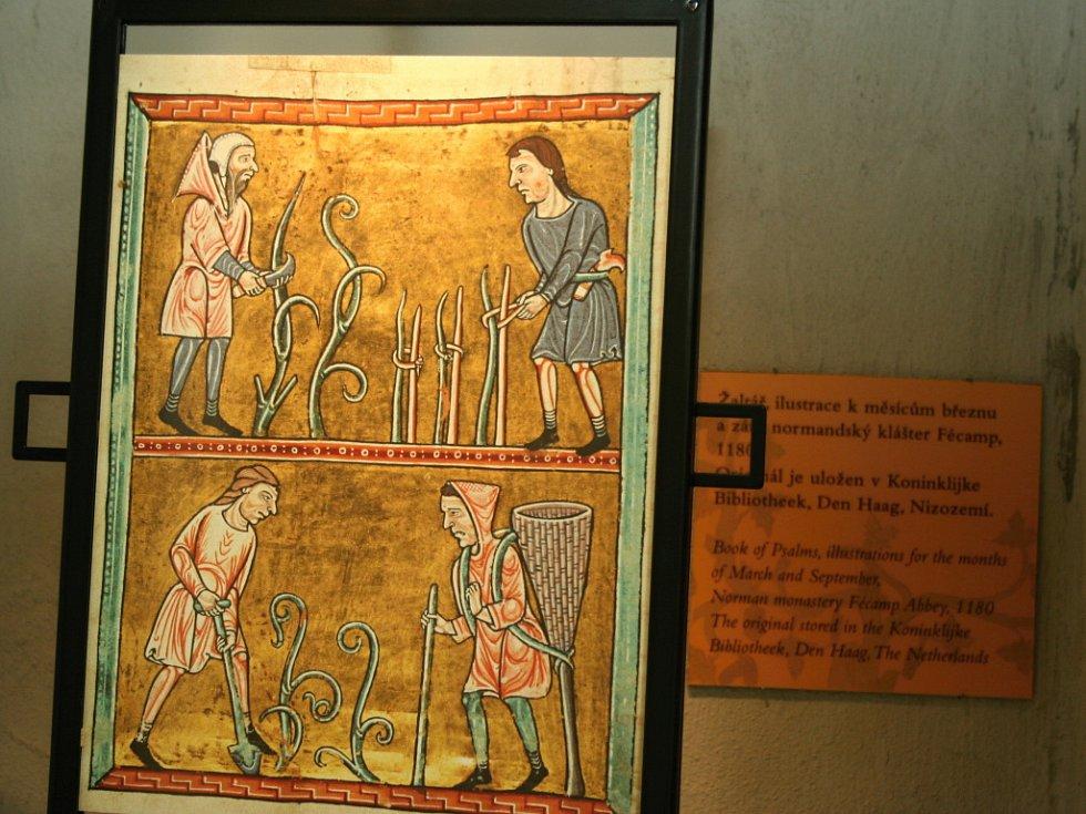 Historická výstava o víně v Mikulově.